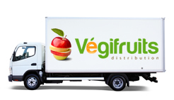 Vegifruits distribution inc. services
